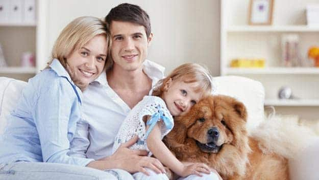 Wills & Trusts dog-young-family Direct Wills Oxfordshire